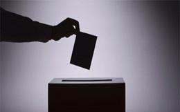 Chủ thể nào có quyền đề nghị trưng cầu ý dân?