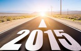 Điểm nhấn kinh tế 2015: Việt Nam đã sẵn sàng