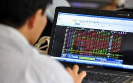 Giao dịch cổ phiếu NDF, thêm một cá nhân bị phạt 62,5 triệu đồng
