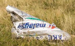 Hà Lan kết luận MH17 bị tên lửa Buk bắn hạ