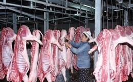 """TPP trong lĩnh vực chăn nuôi: Không đổi mới là tự """"nhấn chìm"""""""