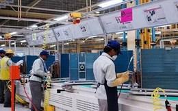 Kinh tế Ấn Độ sẽ đạt mức tăng trưởng khoảng 7% trở lên