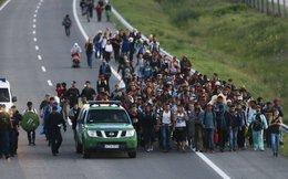 Hàng trăm người tị nạn biểu tình trên đường cao tốc Hungary