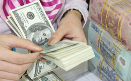 USD tăng giá toàn cầu: Cất két sắt không cần lãi suất?