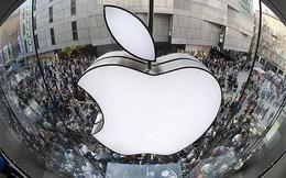 Apple công bố báo cáo lợi nhuận hàng năm lớn nhất trong lịch sử