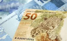 Tỷ lệ lạm phát ở Brazil ở mức cao nhất trong vòng 12 năm qua
