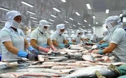 Sẽ yêu cầu Mỹ điều chỉnh nếu quy định về cá tra không đúng chuẩn