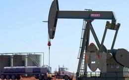 Giải mã những yếu tố đẩy giá dầu tăng trong 2 tuần qua