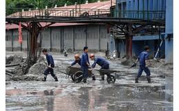 Nhiệt điện giá rẻ và cái giá phải trả nhìn từ trận lũ ở Quảng Ninh