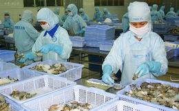 Hai mối lo lớn ngành thủy sản