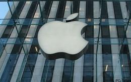 Apple mở công ty tại Việt Nam