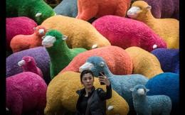 Tết Âm lịch ở Trung Quốc qua những con số