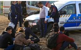 Hungary đóng cửa, di dân chuyển sang Croatia