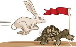 """""""Việt Nam nên là rùa hơn là thỏ"""""""