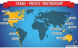[Q&A] Hiểu gì về TPP - Cuộc chơi lớn mà Việt Nam sắp tham gia?