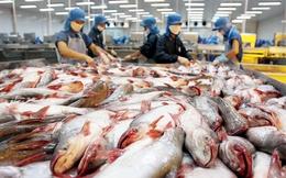 Chuyện cấp đông con cá: DN tranh cãi với Bộ
