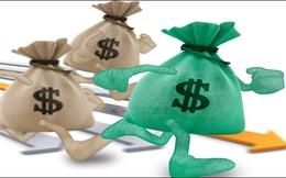 Một công ty khoáng sản chưa niêm yết trả cổ tức bằng tiền 45%