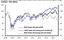 Capital Economics: Thị trường chứng khoán mới nổi đang hấp dẫn sau đợt sụt giảm