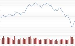 Vốn hóa TTCK mất 97.500 tỷ đồng sau nhiều biến động tháng 8