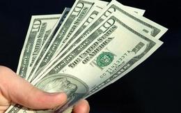 SPP: HĐQT được toàn quyền quyết định việc cầm cố tài sản