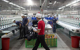 Bloomberg: Việt Nam vẫn chậm chạp trong cải cách doanh nghiệp nhà nước