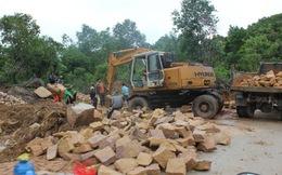 """Chính phủ chỉ đạo làm rõ thông tin """"sốt đất rừng ở Phú Quốc"""""""