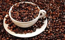 Giá và sản lượng cùng giảm làm khó người trồng cà phê