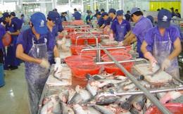 Phản đối Mỹ giám sát cá tra, ba sa của Việt Nam