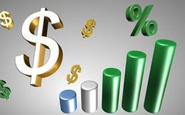 Chứng khoán Quốc Gia (NSI): Có hơn 150 tỷ đồng gửi tiết kiệm, quý 4 lãi tăng 42% so với cùng kỳ