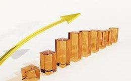 Công ty Cổ phần Đông Á chốt quyền trả cổ tức bằng tiền 30% và họp ĐHCĐ