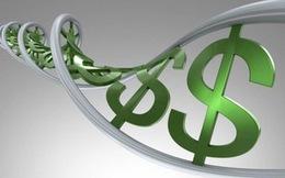 TIG: Chủ tịch HĐQT bán ra hơn 1,2 triệu cổ phiếu