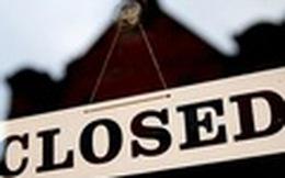 V15, MAX: Cổ phiếu bị tạm ngừng giao dịch