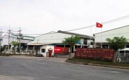 Tạm cho phép Công ty Hào Dương hoạt động trở lại