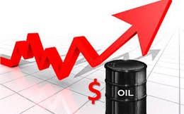PVSD: 7 tháng đạt doanh thu 413 tỷ đồng, chuẩn bị sáp nhập vào PVC Duyên Hải