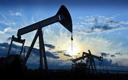 OPEC quyết giữ sản lượng, giá dầu rơi xuống dưới 40 USD/thùng