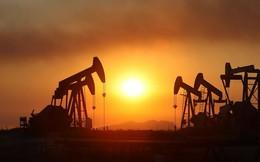 Giá dầu sụt giảm tới 5% vì lo thừa cung