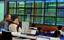 Chứng khoán Navibank: Lãi quý 4 tăng mạnh, EPS cả năm đạt 363 đồng