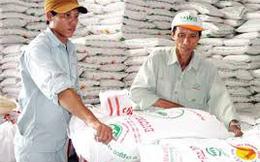 Kiến nghị không nhập khẩu đường từ Lào