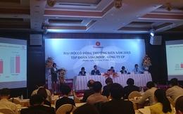 Trực tiếp ĐHCĐ: Vingroup triển khai 1 loạt dự án trong năm 2015, tham gia vào lĩnh vực logistics