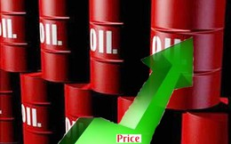 Petrosetco (PSD): Lãi quý 3 đạt hơn 14 tỷ, giảm 32% so với cùng kỳ