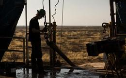 Giá dầu đảo chiều giảm 8,7% - mạnh nhất trong 2 tháng