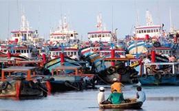 Bọc composite cho tàu cá: Triển vọng mới cho ngư dân đánh bắt xa bờ