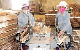Hội nhập TPP: Lợi thế cạnh tranh nào cho ngành chế biến gỗ?