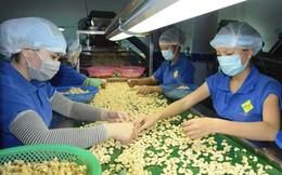 Xuất khẩu vào TPP phải kiểm dịch theo chuỗi sản xuất