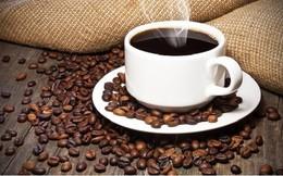 Năm 2015: Giá cà phê robusta nhiều cơ hội tăng hơn arabica