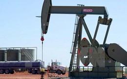 """Iran sẽ nhập khẩu 1 tỷ USD nhiên liệu sau khi """"thoát"""" cấm vận"""