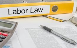 Căn cứ đơn phương chấm dứt hợp đồng lao động theo quy định mới