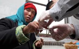 Nửa triệu cô dâu đổ sang Đông Á