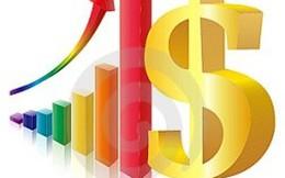 VXB, AME: Lợi nhuận cả năm 2014 tăng nhẹ so với cùng kỳ