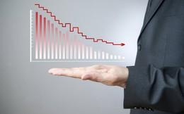 VC7, LBE: Lãi quý 2 sụt giảm so với cùng kỳ